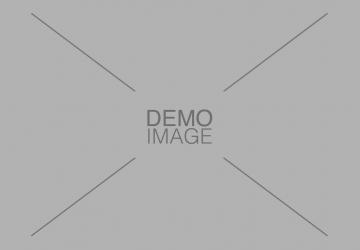 Demo Image 7